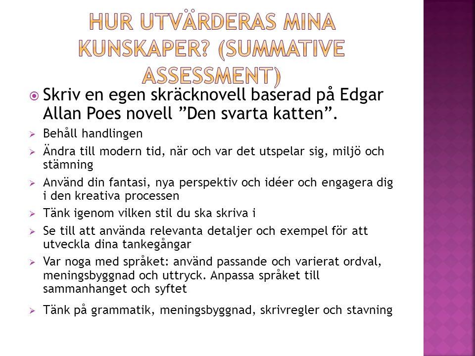 """ Skriv en egen skräcknovell baserad på Edgar Allan Poes novell """"Den svarta katten"""".  Behåll handlingen  Ändra till modern tid, när och var det utsp"""