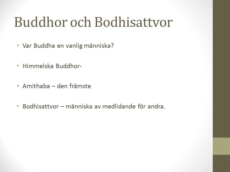 Buddhor och Bodhisattvor Var Buddha en vanlig människa? Himmelska Buddhor- Amithaba – den främste Bodhisattvor – människa av medlidande för andra.