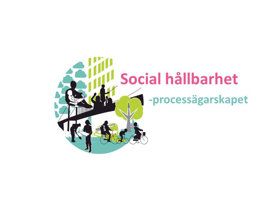 Social hållbarhet -processägarskapet