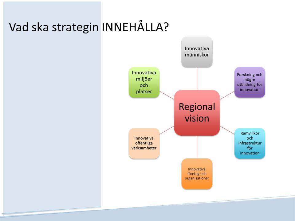 Vad ska strategin INNEHÅLLA?