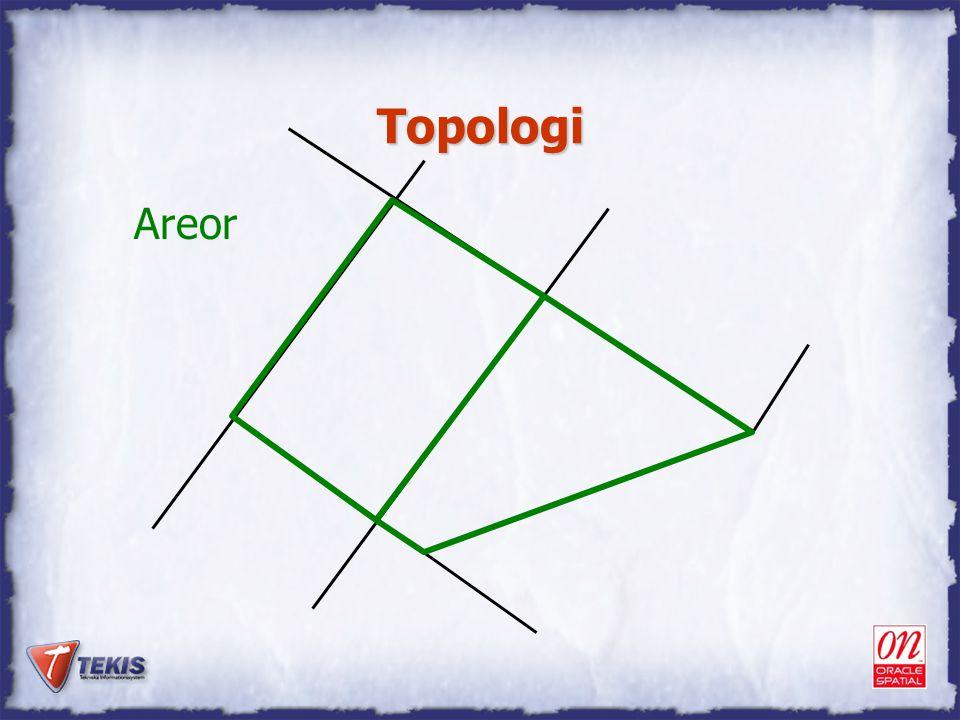 Topologi Areor