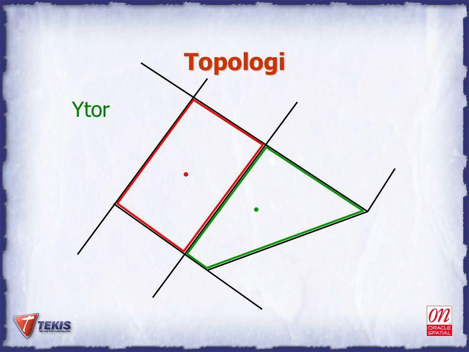 Topologi Ytor