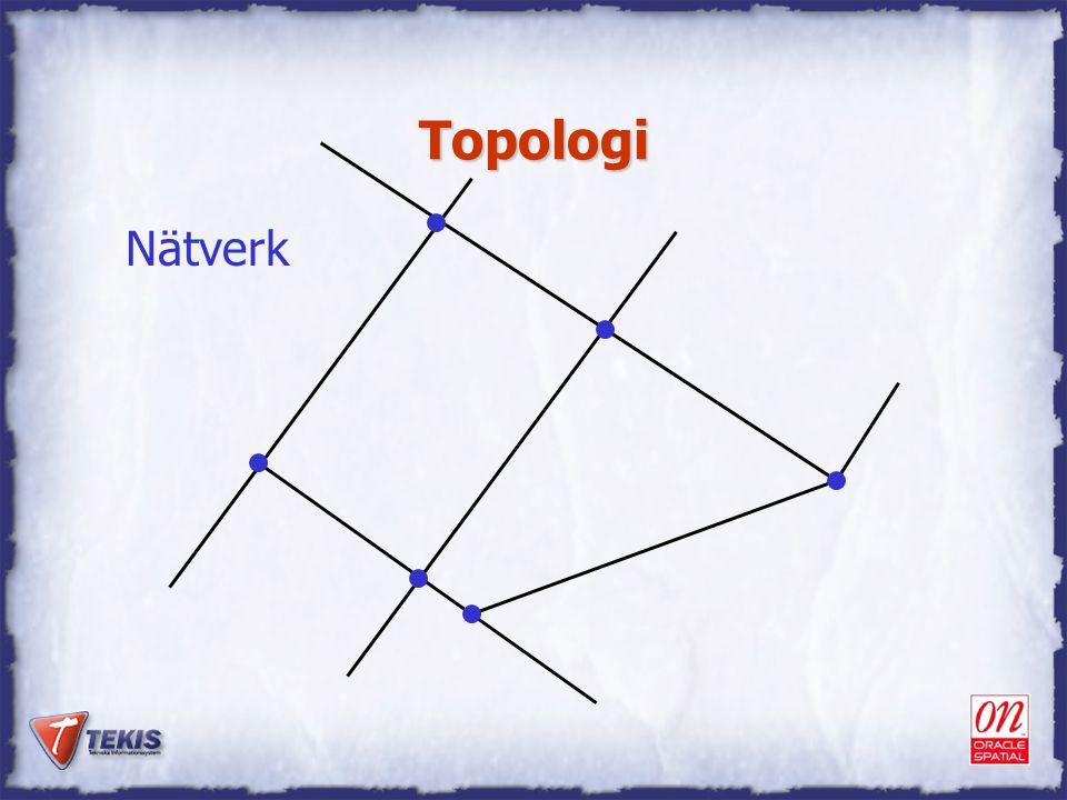 Topologi Nätverk