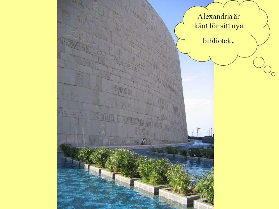 Alexandria är känt för sitt nya bibliotek.