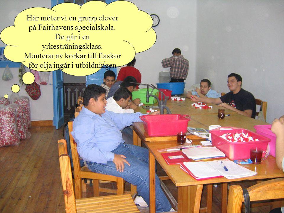 Här möter vi en grupp elever på Fairhavens specialskola.