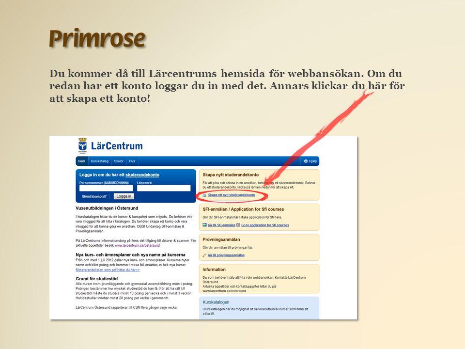 Du kommer då till Lärcentrums hemsida för webbansökan.