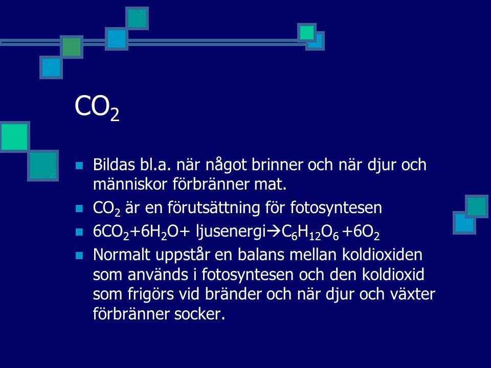 CO 2 Bildas bl.a. när något brinner och när djur och människor förbränner mat. CO 2 är en förutsättning för fotosyntesen 6CO 2 +6H 2 O+ ljusenergi  C
