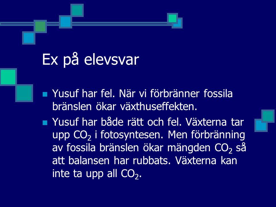 Ex på elevsvar Yusuf har fel. När vi förbränner fossila bränslen ökar växthuseffekten. Yusuf har både rätt och fel. Växterna tar upp CO 2 i fotosyntes