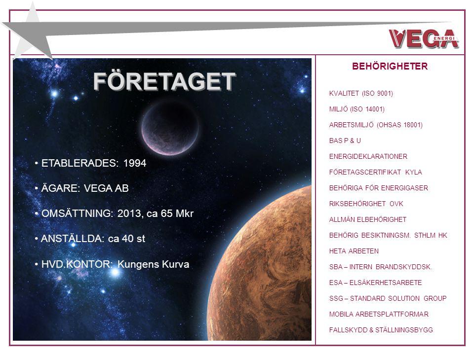 AFFÄRSIDÉ Vega Energi erbjuder drift- och konsulttjänster inom värme och kyla för teknikintensiva kunder.