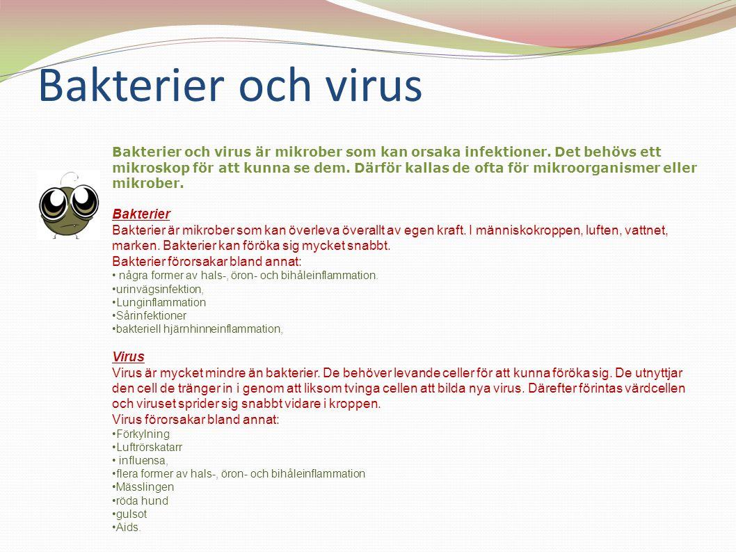 Bakterier och virus Bakterier och virus är mikrober som kan orsaka infektioner. Det behövs ett mikroskop för att kunna se dem. Därför kallas de ofta f