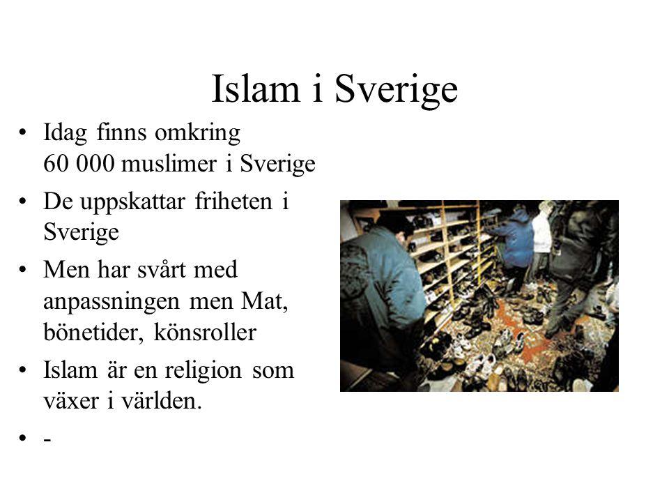 Islam i Sverige Idag finns omkring 60 000 muslimer i Sverige De uppskattar friheten i Sverige Men har svårt med anpassningen men Mat, bönetider, könsr