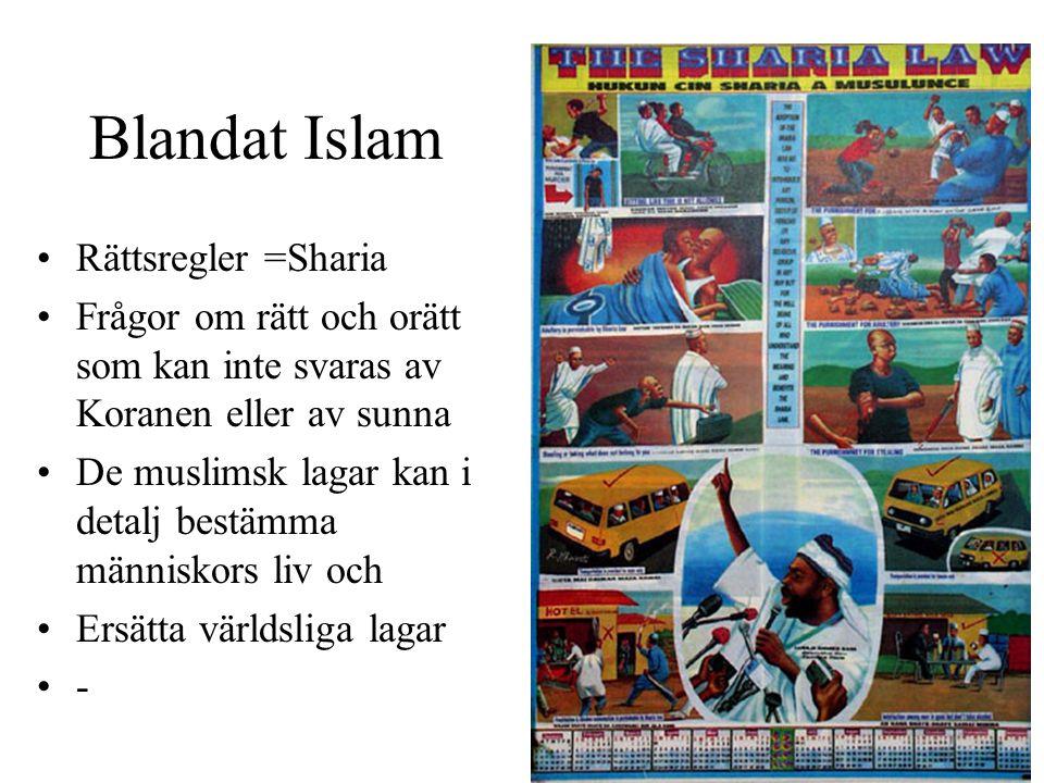 Blandat Islam Rättsregler =Sharia Frågor om rätt och orätt som kan inte svaras av Koranen eller av sunna De muslimsk lagar kan i detalj bestämma männi