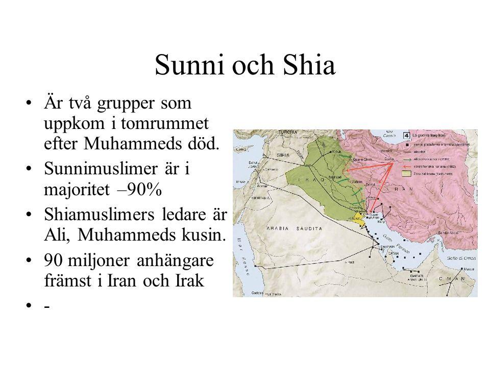 Sunni och Shia Är två grupper som uppkom i tomrummet efter Muhammeds död. Sunnimuslimer är i majoritet –90% Shiamuslimers ledare är Ali, Muhammeds kus
