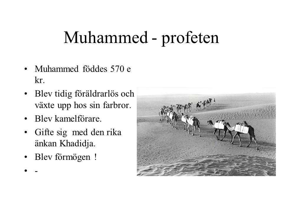 Muhammed - profeten Muhammed föddes 570 e kr. Blev tidig föräldrarlös och växte upp hos sin farbror. Blev kamelförare. Gifte sig med den rika änkan Kh