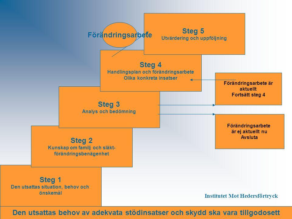 Steg 1 Den utsattas situation, behov och önskemål Steg 2 Kunskap om familj och släkt- förändringsbenägenhet Steg 3 Analys och bedömning Steg 4 Handlin