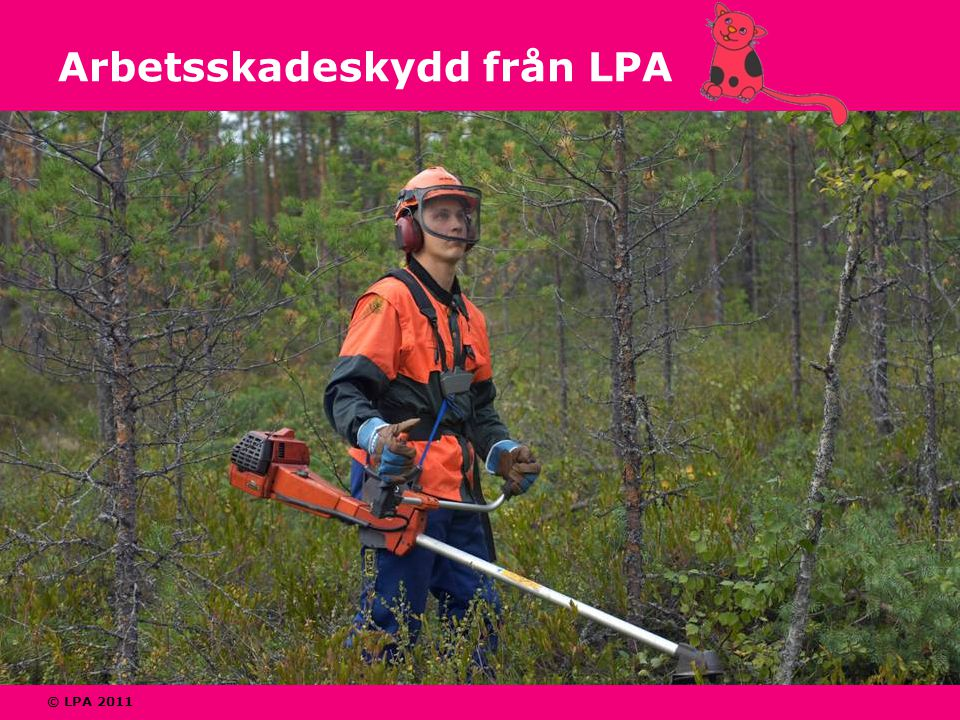 © LPA 2011 Arbetsskadeskydd från LPA