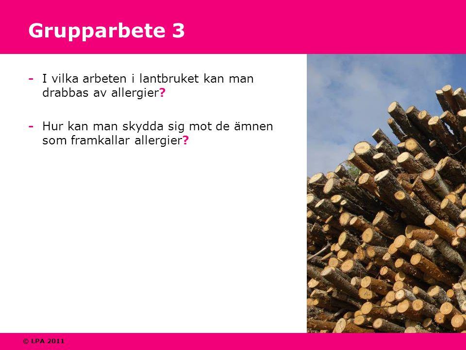 © LPA 2011 Grupparbete 3 - I vilka arbeten i lantbruket kan man drabbas av allergier? - Hur kan man skydda sig mot de ämnen som framkallar allergier?