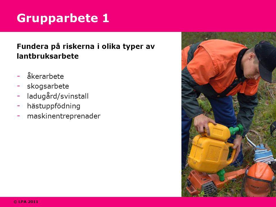 © LPA 2011 Grupparbete 1 Fundera på riskerna i olika typer av lantbruksarbete - åkerarbete - skogsarbete - ladugård/svinstall - hästuppfödning - maskinentreprenader
