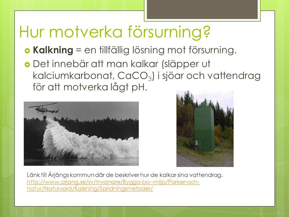 Hur motverka försurning?  Kalkning = en tillfällig lösning mot försurning.  Det innebär att man kalkar (släpper ut kalciumkarbonat, CaCO 3 ) i sjöar