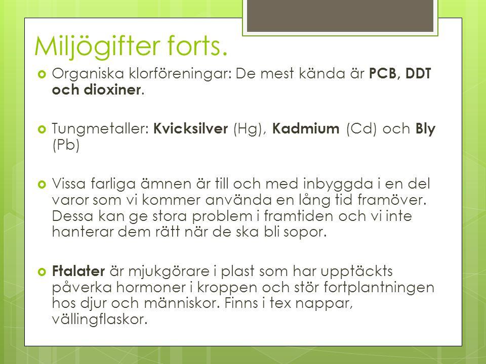 Miljögifter forts.  Organiska klorföreningar: De mest kända är PCB, DDT och dioxiner.  Tungmetaller: Kvicksilver (Hg), Kadmium (Cd) och Bly (Pb)  V