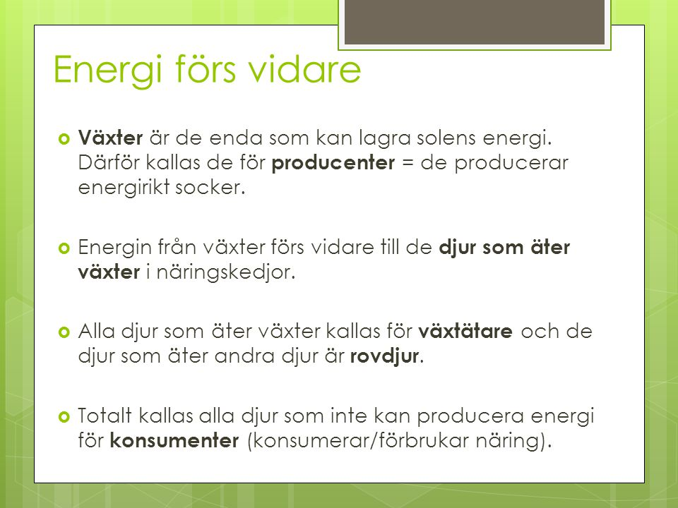 Energi förs vidare  Växter är de enda som kan lagra solens energi. Därför kallas de för producenter = de producerar energirikt socker.  Energin från