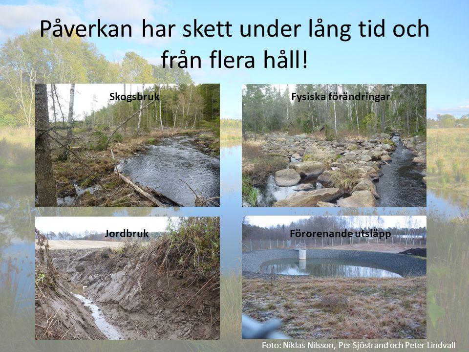 Påverkan har skett under lång tid och från flera håll! Foto: Niklas Nilsson, Per Sjöstrand och Peter Lindvall SkogsbrukFysiska förändringar JordbrukFö