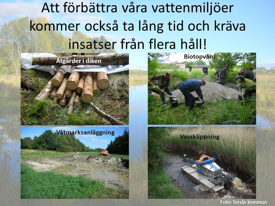Att förbättra våra vattenmiljöer kommer också ta lång tid och kräva insatser från flera håll! Foto: Torsås kommun Åtgärder i diken Biotopvård Våtmarks