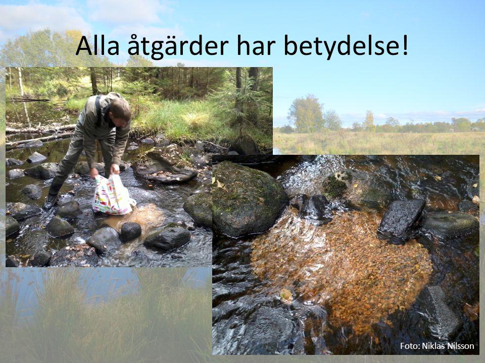 Alla åtgärder har betydelse! Foto: Niklas Nilsson