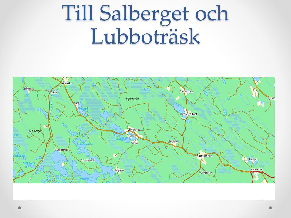 Bouppteckning Fastställd av Burträsks Tingslag den 14 september 1795 År 1794 den 18 november kallades nedannämnda av änkan Sara Jakobsdotter i Renbergsvattnet Burträsk att uppteckna och värdera den egendom som fanns efter dess aflidne man soldaten Nils Andersson Renman, samt dela densamma mellan sig och sina sju stycken barn, 4 söner och 3 döttrar alla omyndiga förutom sonen Anders, då även Nils Persson i Åbyn, barnens förmyndare, var närvarande Och avlöpte som följer: