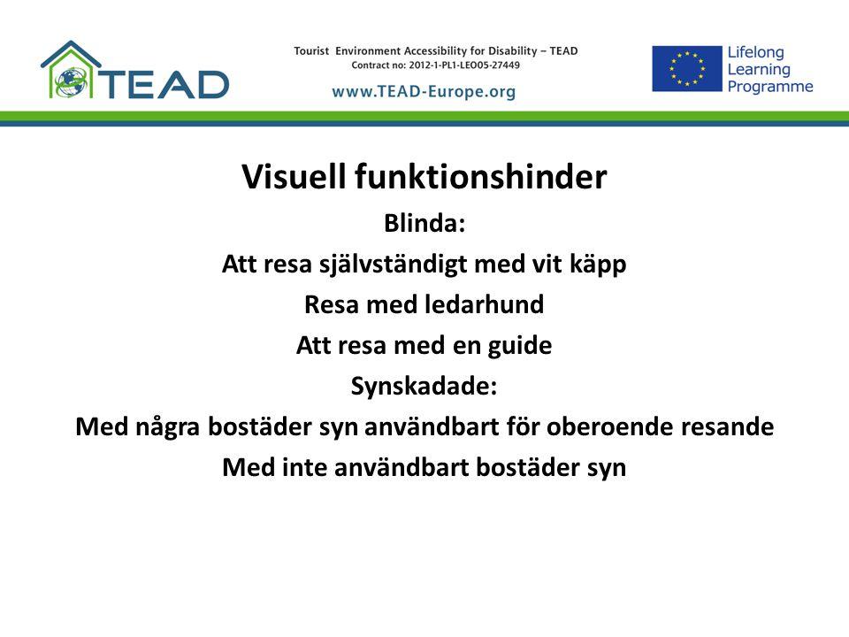 Visuella funktionshinder Exempel på visuella funktionshinder: Total blindhet Ljus uppfattning Central synförlust Perifer synbortfall (tunnelseende) Fragmentariska synfältet Synförlust på grund av sämre skärpa med störningar (närsynthet, åldersseförlust) FÄRGBLINDHET och Nattblindhet