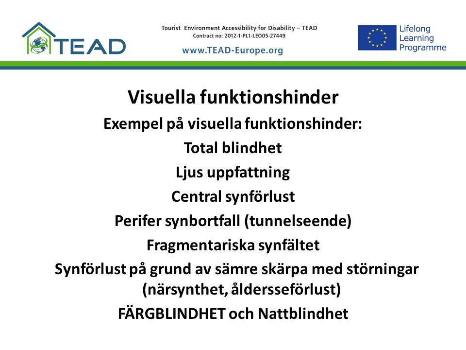 Visuella funktionshinder Exempel på visuella funktionshinder: Total blindhet Ljus uppfattning Central synförlust Perifer synbortfall (tunnelseende) Fr