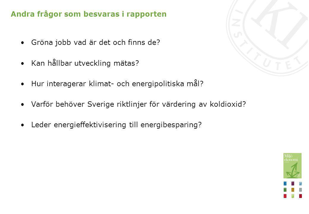 Andra frågor som besvaras i rapporten Gröna jobb vad är det och finns de? Kan hållbar utveckling mätas? Hur interagerar klimat- och energipolitiska må