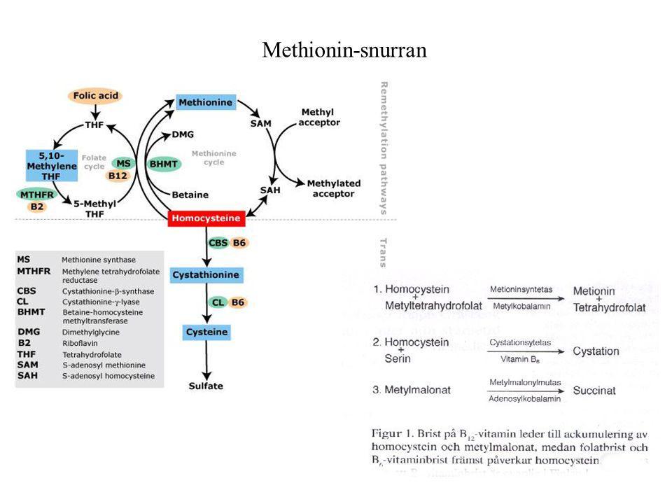 Methionin-snurran