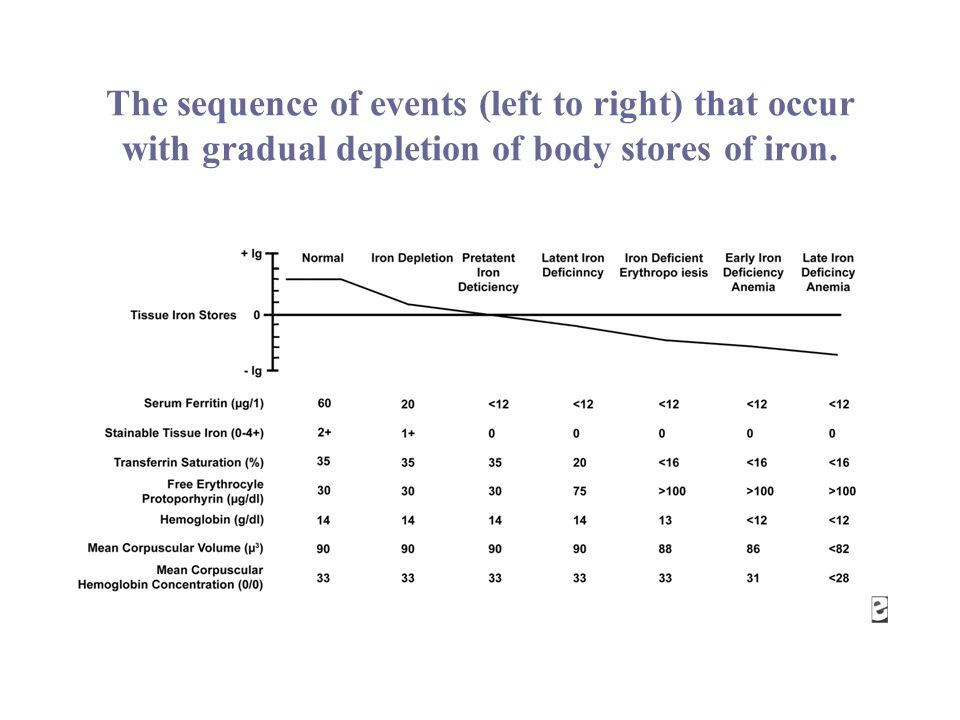 The sequence of events (left to right) that occur with gradual depletion of body stores of iron.