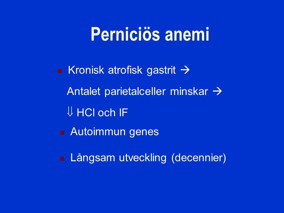 Perniciös anemi Kronisk atrofisk gastrit  Antalet parietalceller minskar   HCl och IF Autoimmun genes Långsam utveckling (decennier)