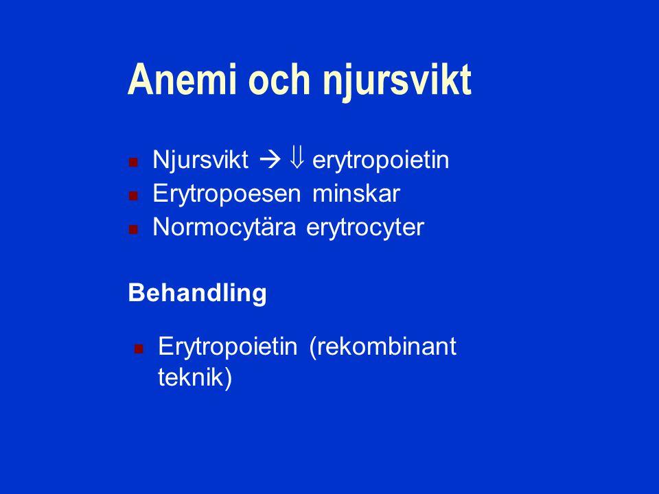 Anemi och njursvikt Njursvikt   erytropoietin Erytropoesen minskar Normocytära erytrocyter Erytropoietin (rekombinant teknik) Behandling