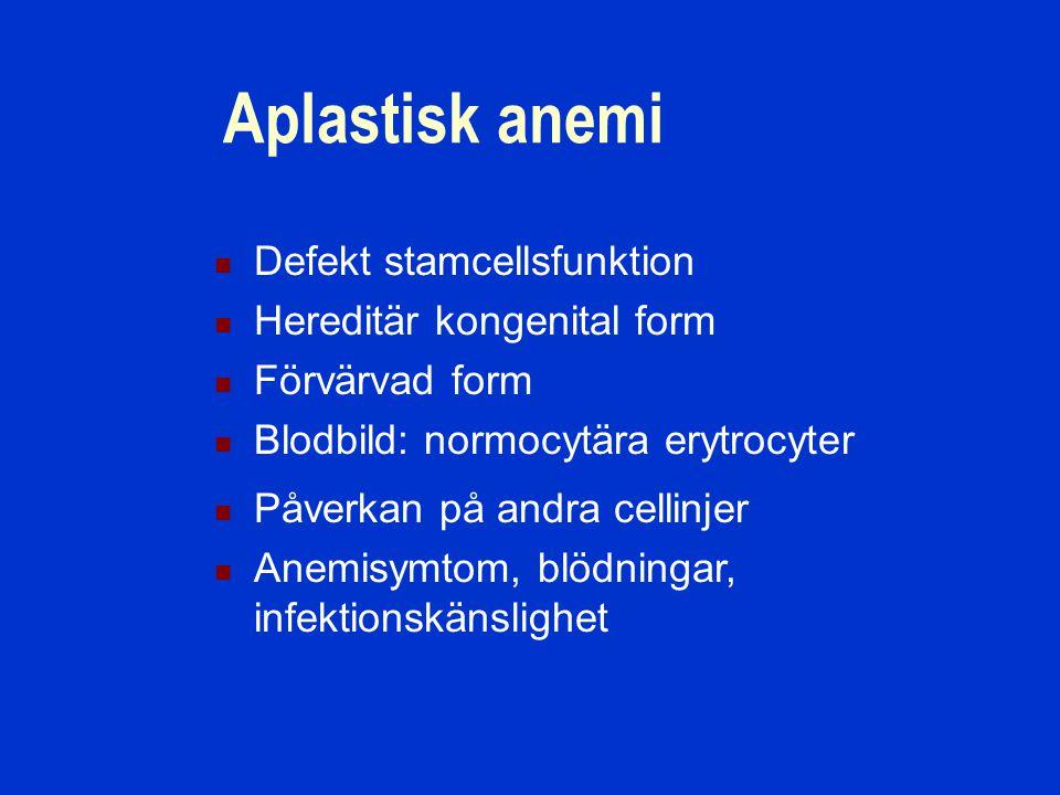 Aplastisk anemi Defekt stamcellsfunktion Hereditär kongenital form Förvärvad form Blodbild: normocytära erytrocyter Påverkan på andra cellinjer Anemisymtom, blödningar, infektionskänslighet