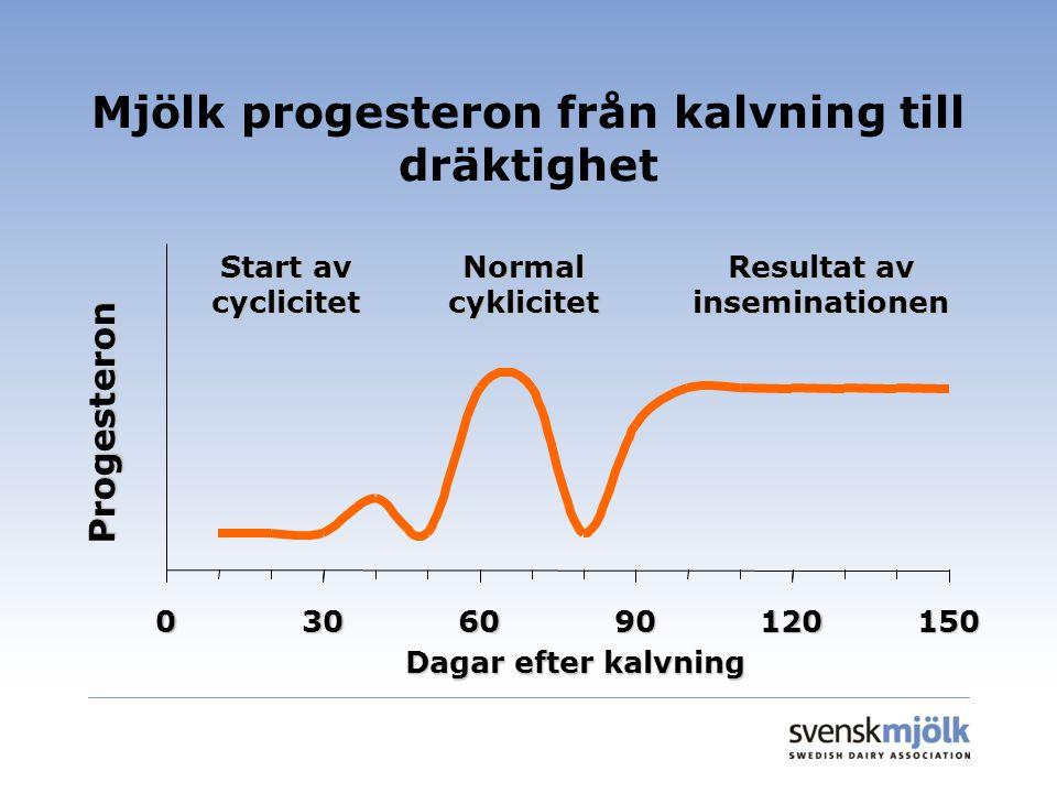 Mjölk progesteron från kalvning till dräktighet 0306090120150 Dagar efter kalvning Progesteron Start av cyclicitet Normal cyklicitet Resultat av inseminationen