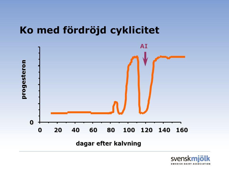 Ko med fördröjd cyklicitet 0 020406080100120140160 dagar efter kalvning progesteron AI