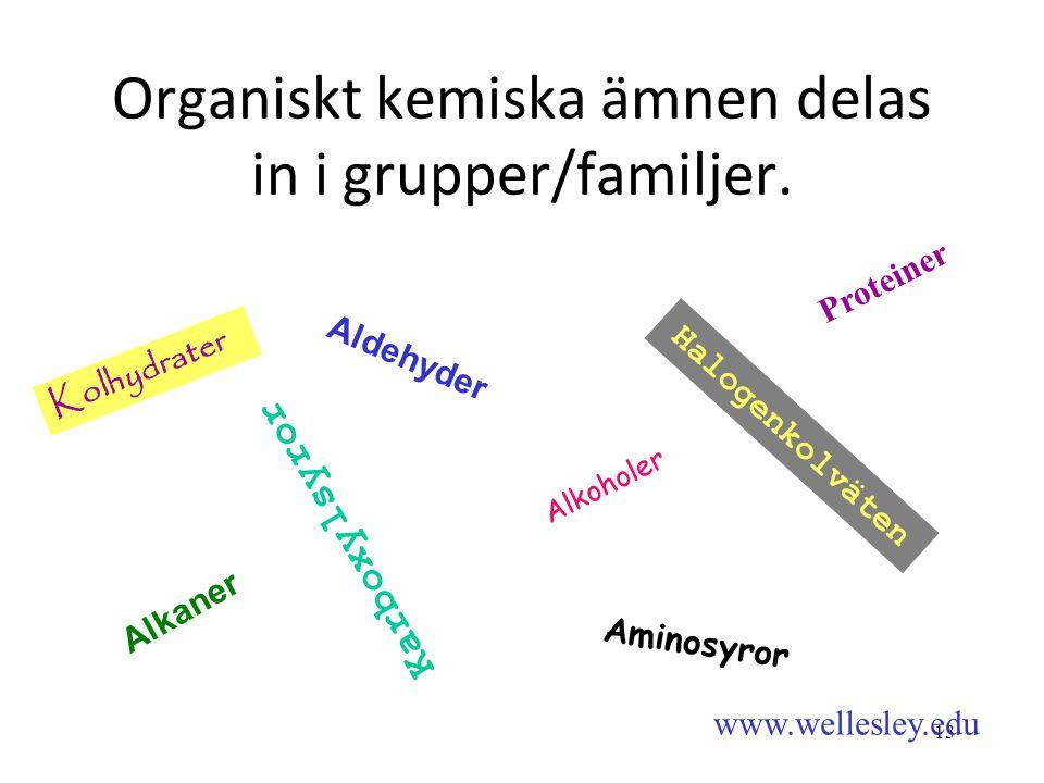 13 Organiskt kemiska ämnen delas in i grupper/familjer. Alkaner Alkoholer Aldehyder Halogenkolväten Karboxylsyror Aminosyror Kolhydrater Proteiner www