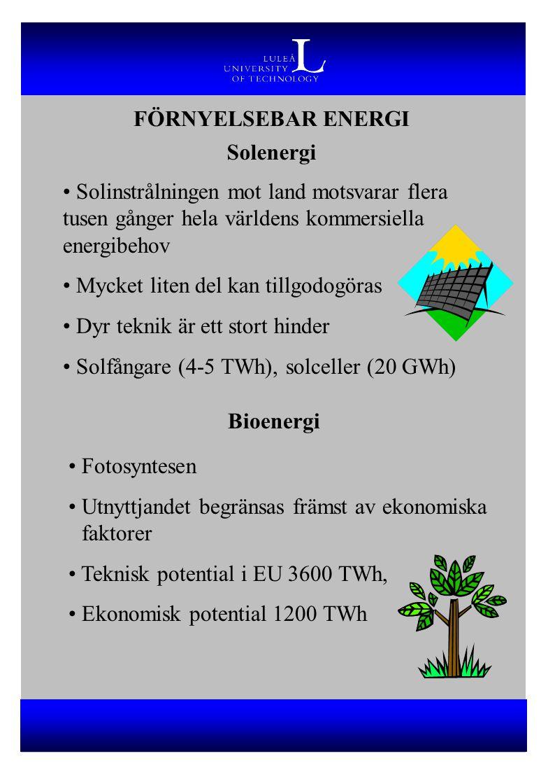 Solenergi Solinstrålningen mot land motsvarar flera tusen gånger hela världens kommersiella energibehov Mycket liten del kan tillgodogöras Dyr teknik är ett stort hinder Solfångare (4-5 TWh), solceller (20 GWh) Bioenergi Fotosyntesen Utnyttjandet begränsas främst av ekonomiska faktorer Teknisk potential i EU 3600 TWh, Ekonomisk potential 1200 TWh FÖRNYELSEBAR ENERGI