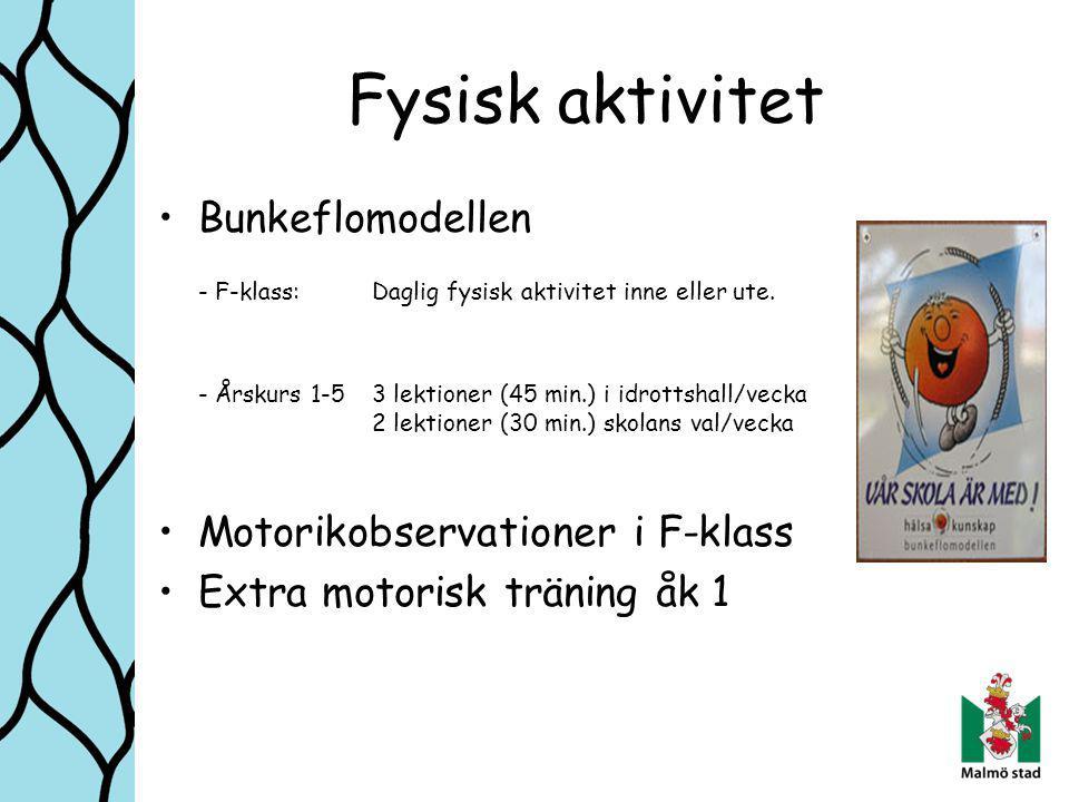 Fysisk aktivitet Bunkeflomodellen - F-klass:Daglig fysisk aktivitet inne eller ute.
