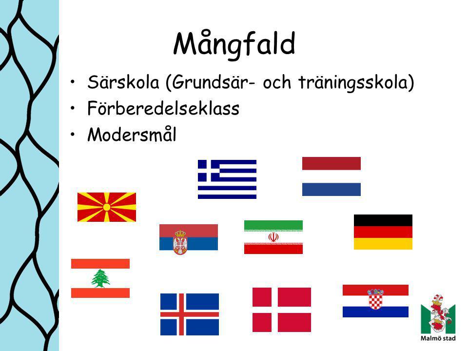 Mångfald Särskola (Grundsär- och träningsskola) Förberedelseklass Modersmål