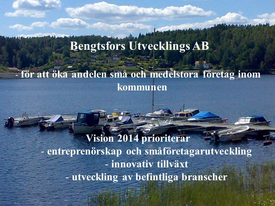 Bengtsfors Utvecklings AB - för att öka andelen små och medelstora företag inom kommunen Vision 2014 prioriterar - entreprenörskap och småföretagarutveckling - innovativ tillväxt - utveckling av befintliga branscher