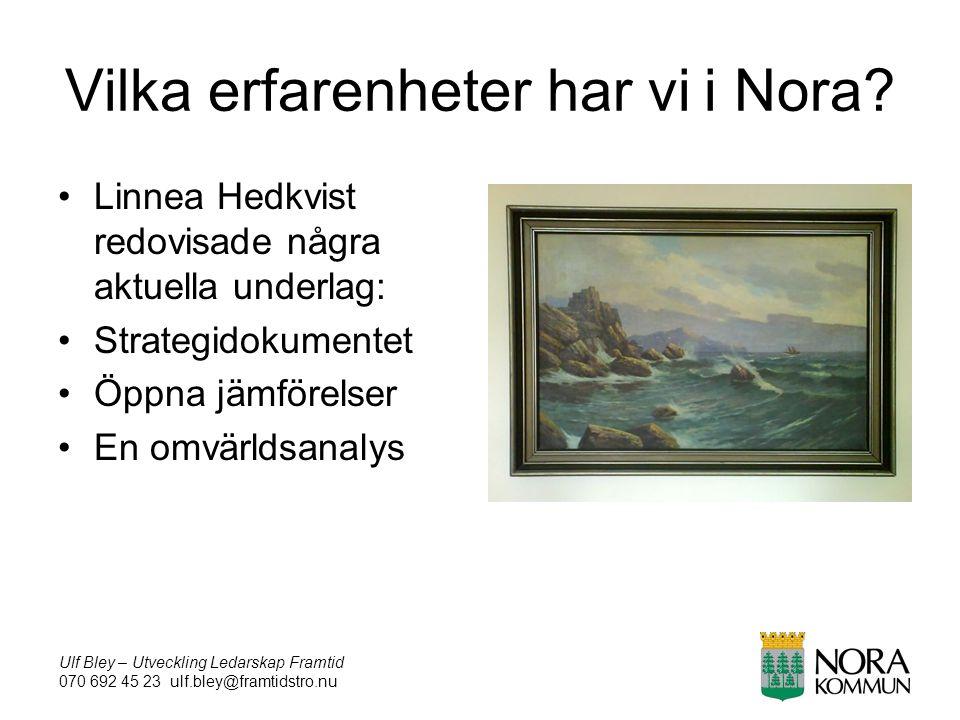 Ulf Bley – Utveckling Ledarskap Framtid 070 692 45 23 ulf.bley@framtidstro.nu Vilka erfarenheter har vi i Nora.