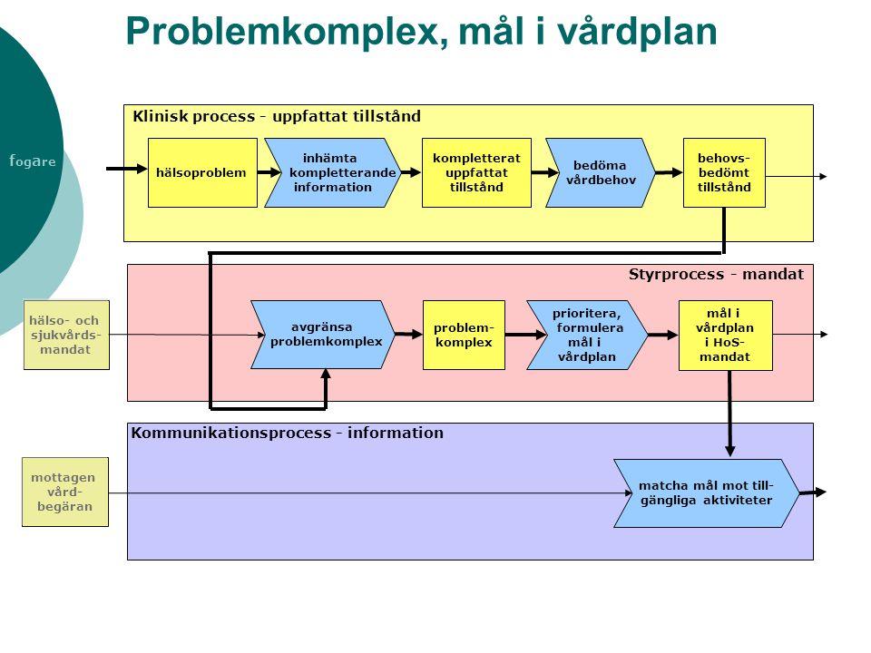 f og a re Problemkomplex, mål i vårdplan inhämta kompletterande information kompletterat uppfattat tillstånd avgränsa problemkomplex mål i vårdplan i