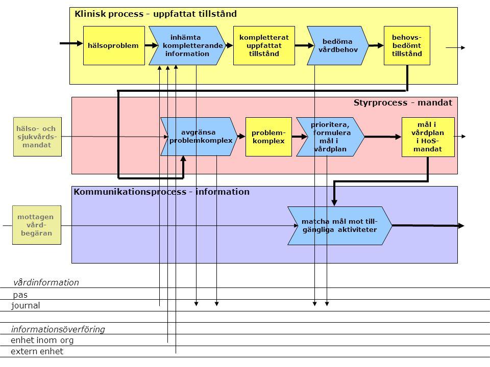 inhämta kompletterande information kompletterat uppfattat tillstånd avgränsa problemkomplex mål i vårdplan i HoS- mandat Klinisk process - uppfattat t