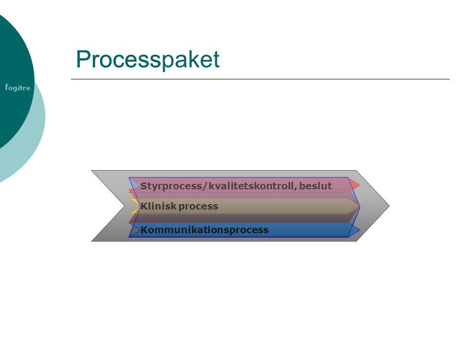 f og a re Process Kommunikationsprocess Styrprocess/kvalitetskontroll, beslut Klinisk process Processpaket