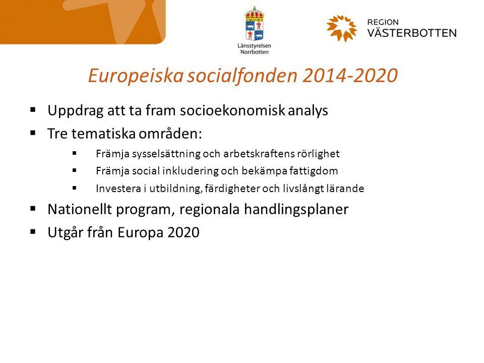 Europeiska socialfonden 2014-2020  Uppdrag att ta fram socioekonomisk analys  Tre tematiska områden:  Främja sysselsättning och arbetskraftens rörl