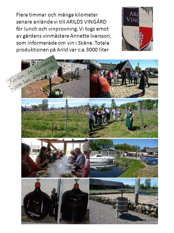 Flera timmar och många kilometer senare anlände vi till ARILDS VINGÅRD för lunch och vinprovning.